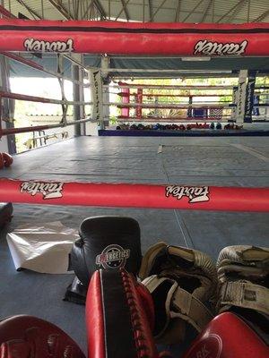 PBG ringside