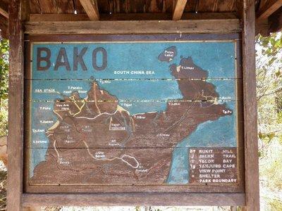 Baco_Map.jpg