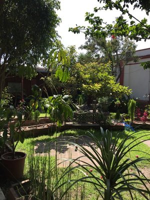 celas_maya_garden.jpg