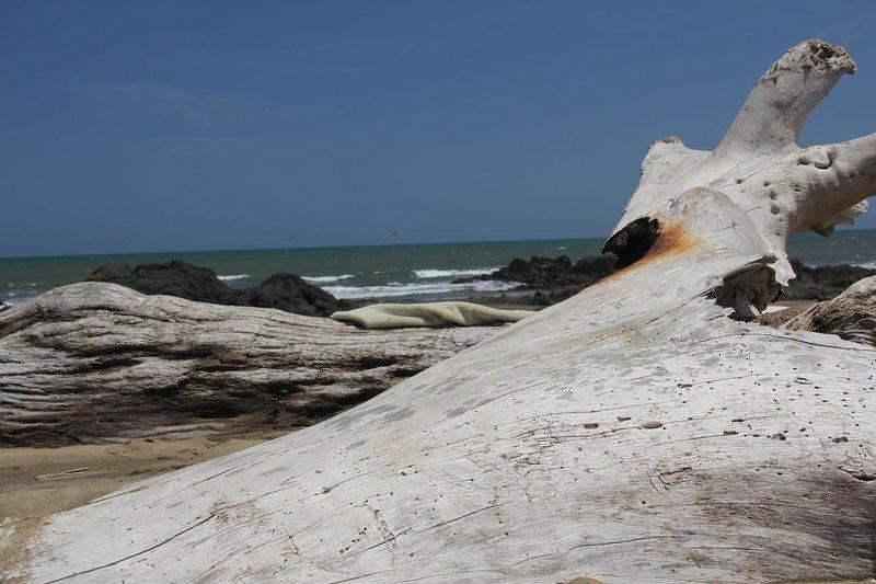 Playa del Toro