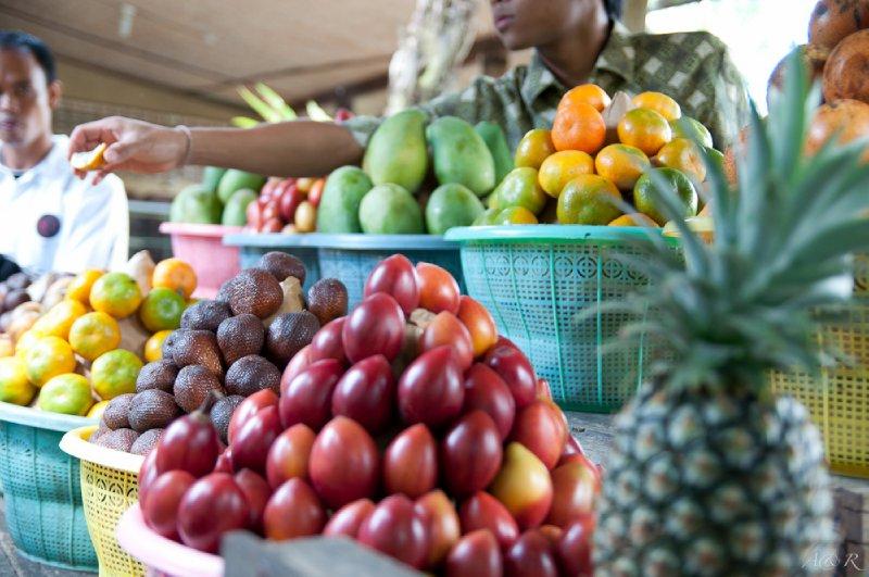 Fruit sampling at local coffee plantation