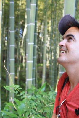 Luke Bamboo