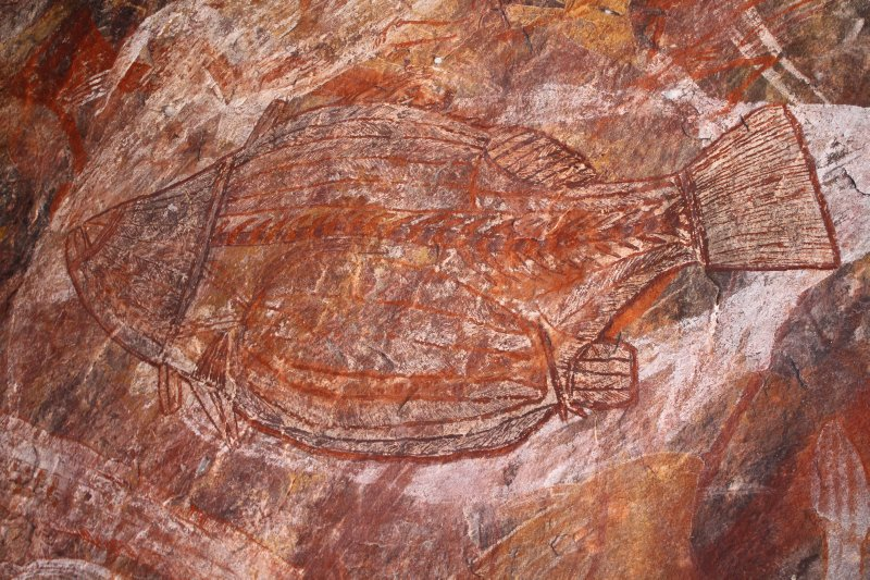 Barramundi x-ray style painting at Ubirr
