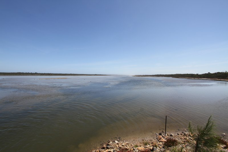 Lake Reeve
