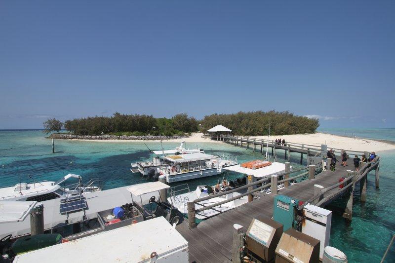 Heron Island harbour