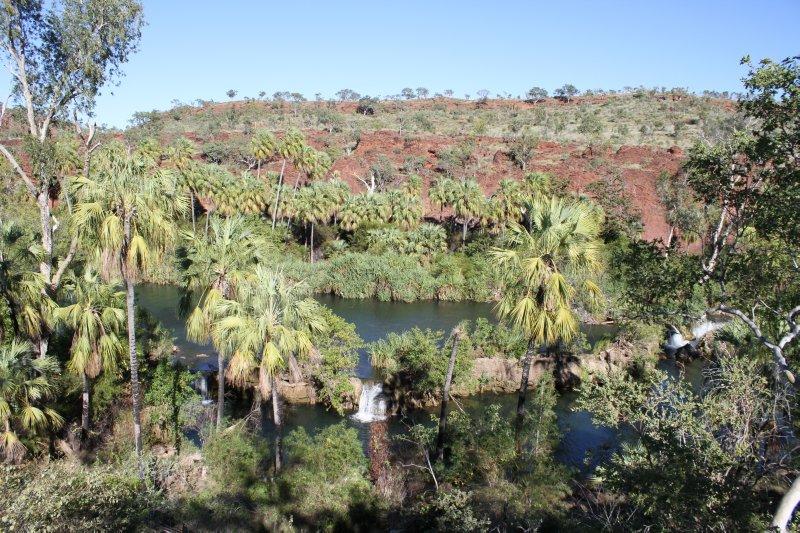Indarri Falls - an oasis