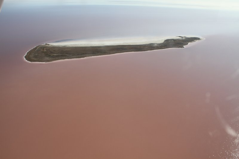 Island in Lake Eyre