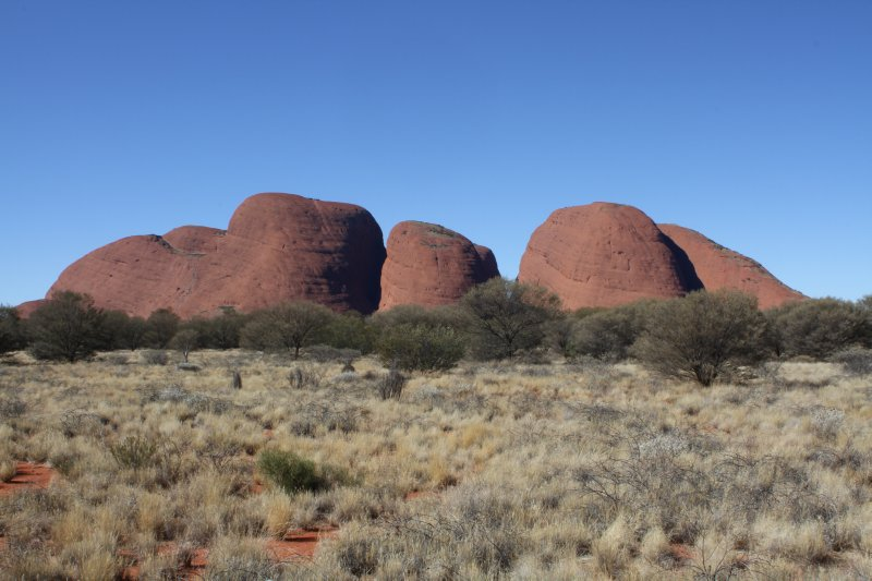 Kata Tjuta during the day