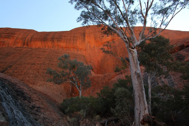 Kata Tjuta rock face