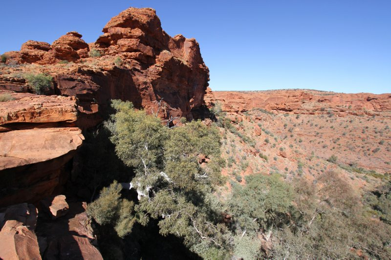 Stunning scenery at Kings Canyon