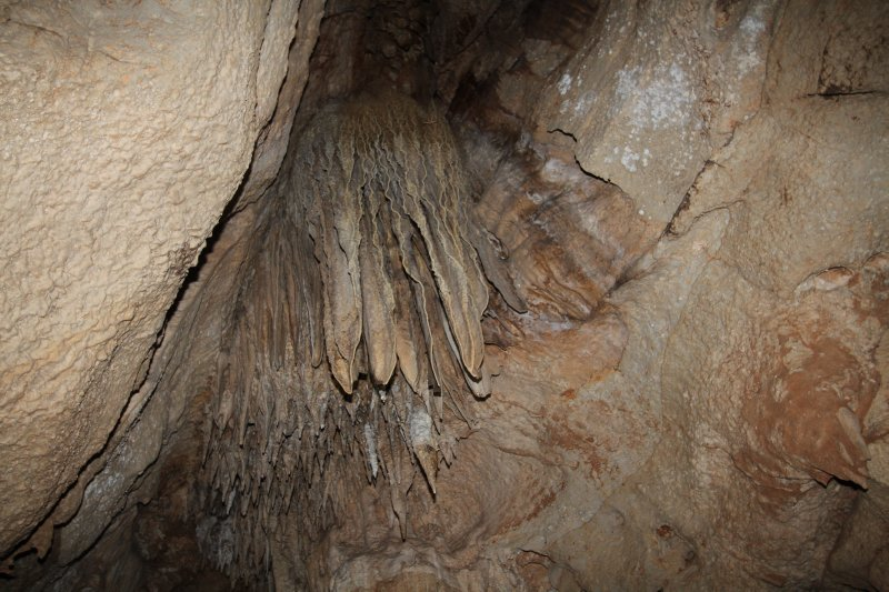 Leaf-like stalactites in Cutta Cutta cave