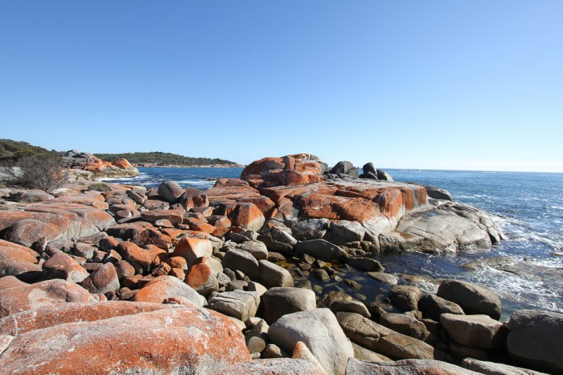 Lichen covered rocks
