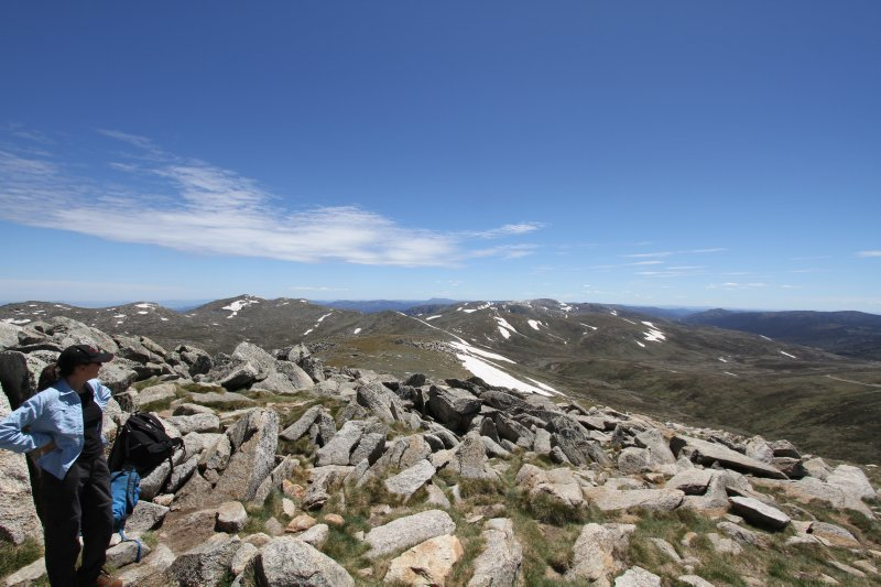 Mt Koskiuszko summit