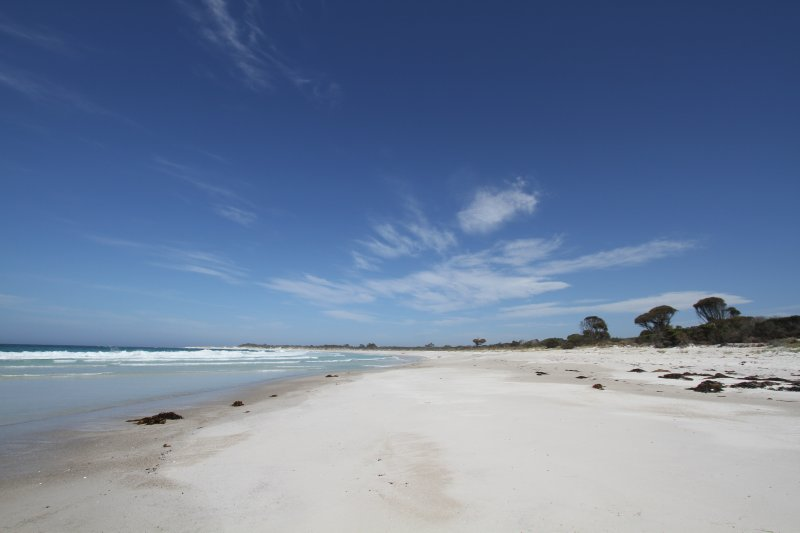 Mt William National Park beach