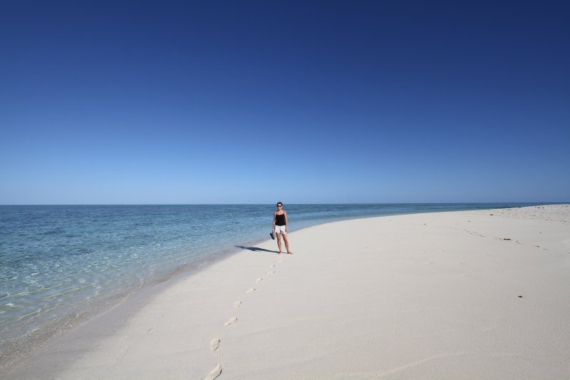 Pristine beaches on Heron Island