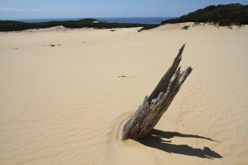 Sandblow casualty