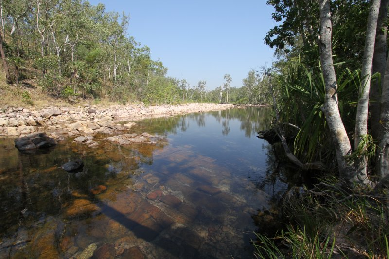 Tranquil creek in Litchfield National Park