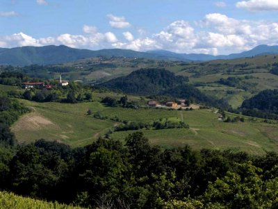 Hills of the Oltrepò Pavese