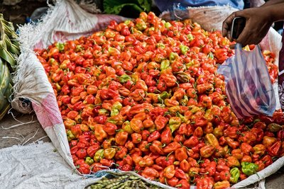 Mutsamudu Market - Chillies 1