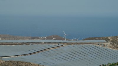 Solar_Farm.jpg