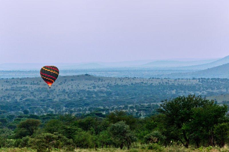 large_Balloons_o..engeti_11-2.jpg