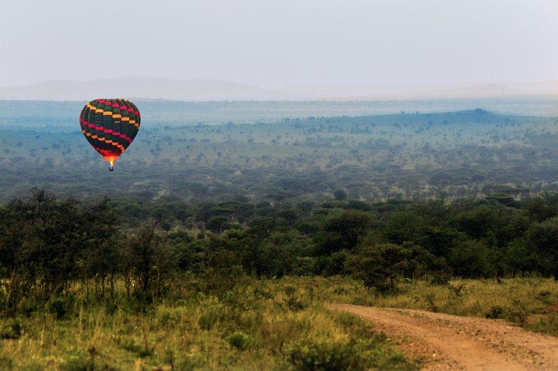 large_Balloons_o..engeti_11-3.jpg