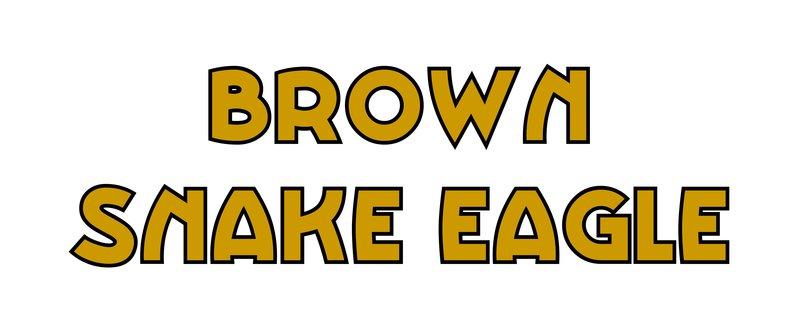 large_Brown_Snake_eagle.jpg