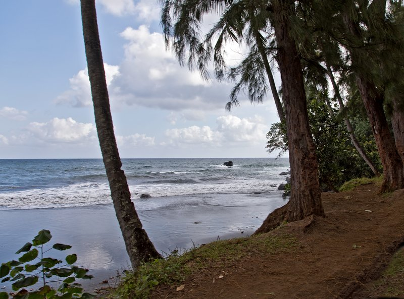 large_Coastal_Scenes__Anjouan_5.jpg