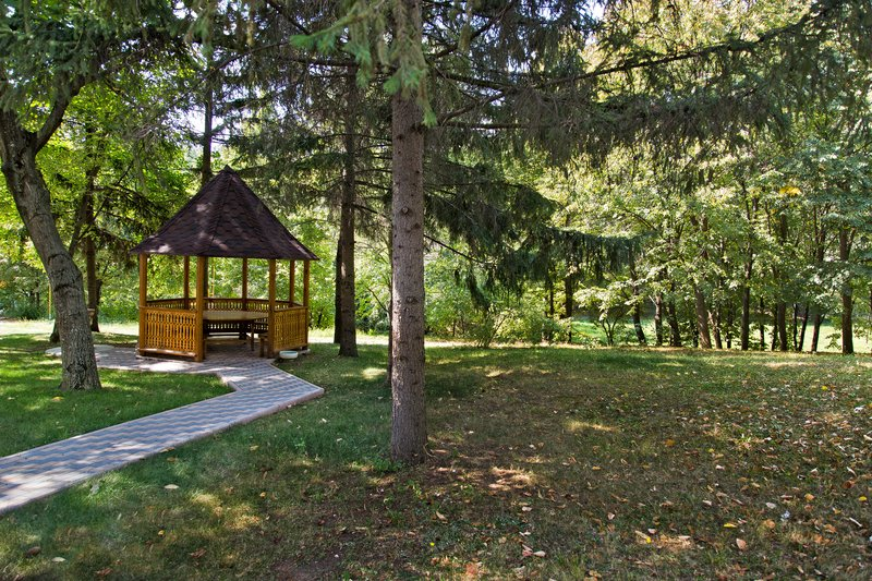 large_Codrii_Forest_Reserve_1.jpg