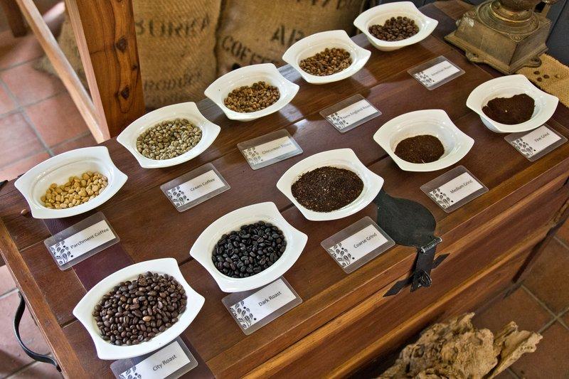 large_Coffee_Tour_13.jpg