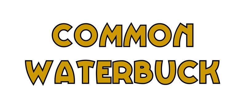 large_Common_Waterbuck.jpg
