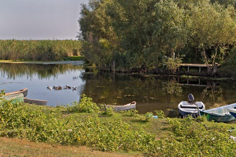 large_Danube_Delta_1.jpg