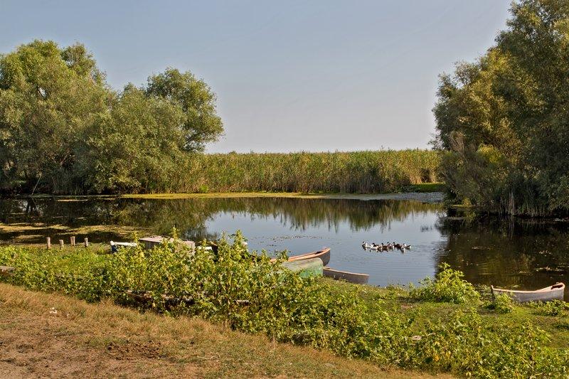 large_Danube_Delta_3.jpg
