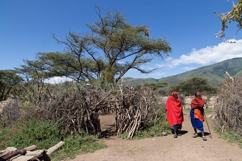 large_Elerai_Maasai_Village_37.jpg