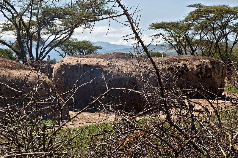 large_Elerai_Maasai_Village_41.jpg