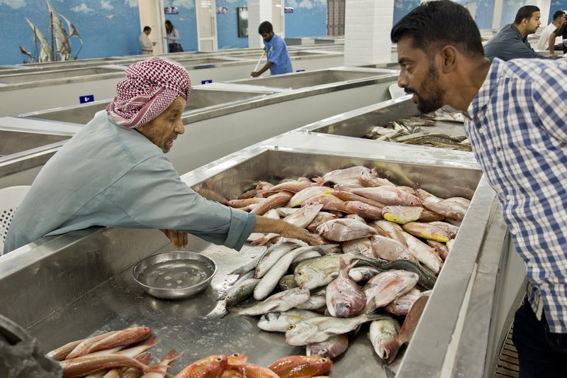 large_Fish_Market_9.jpg