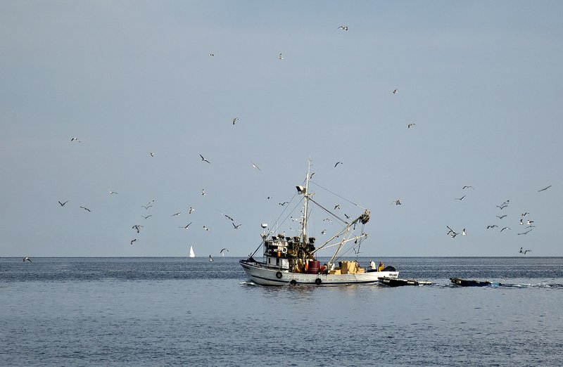 large_Fishing_Trawler_1.jpg