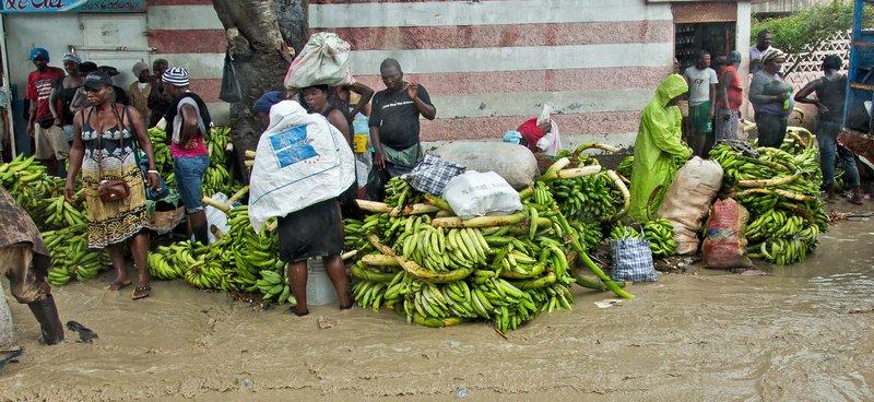 large_Flooded_Banana_Market_1.jpg