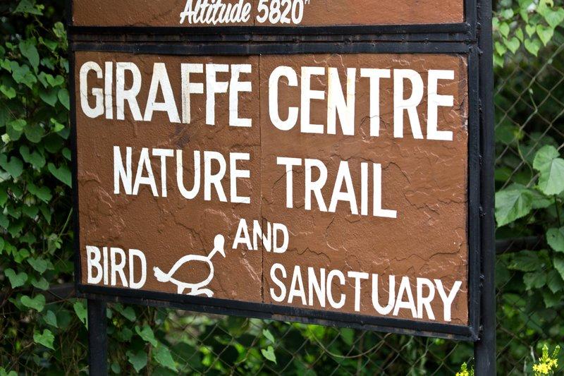 large_Giraffe_Ce..ure_Trail_1.jpg