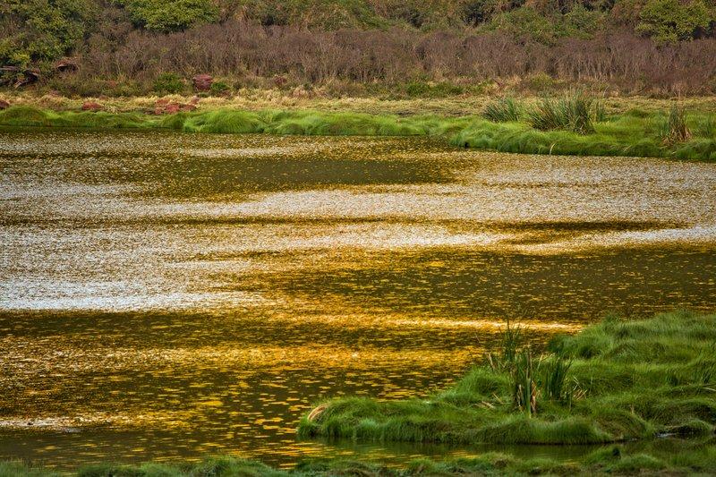 large_Glistening_Lake.jpg