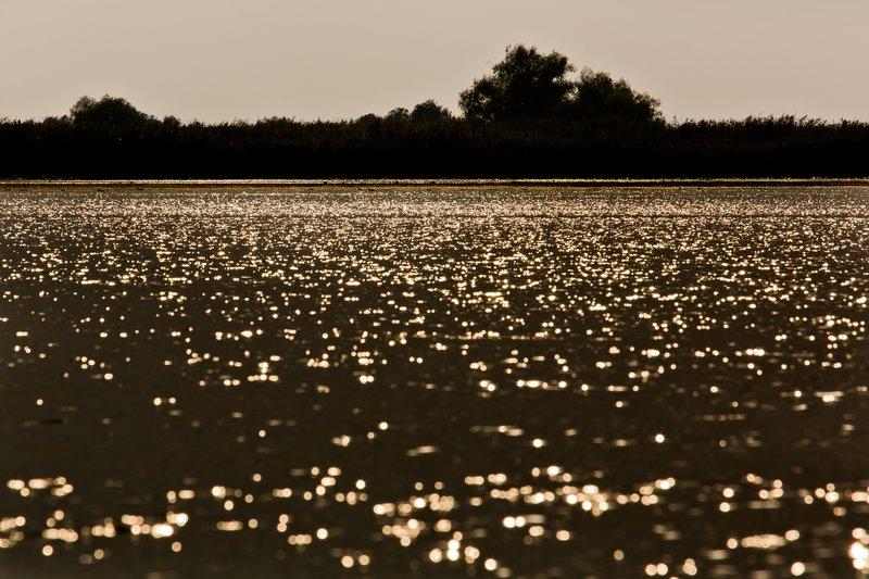 large_Glistening_Water_1.jpg