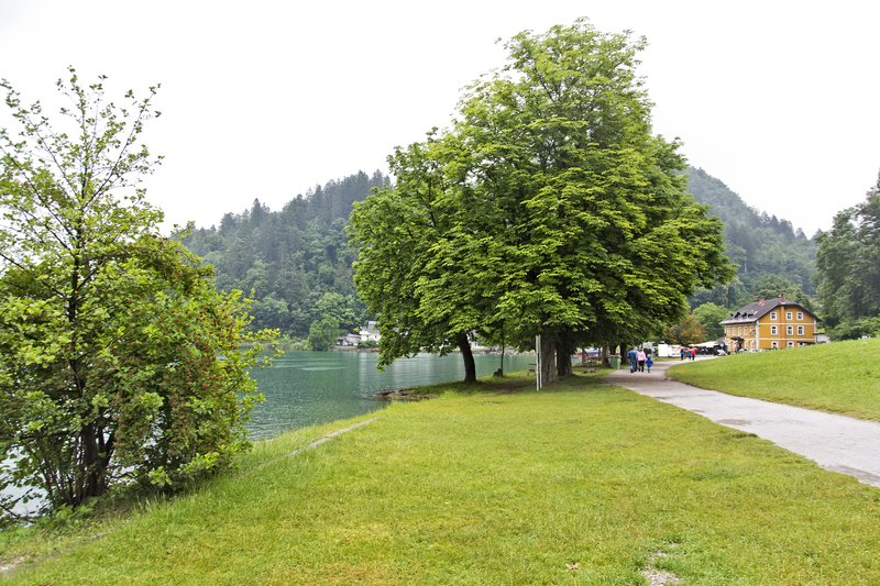 large_Guest_House_Mlino__Bled_1.jpg