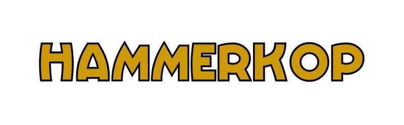 large_Hammerkop.jpg