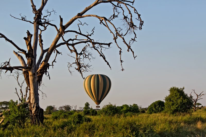 large_Hot_Air_Balloon_12-4.jpg