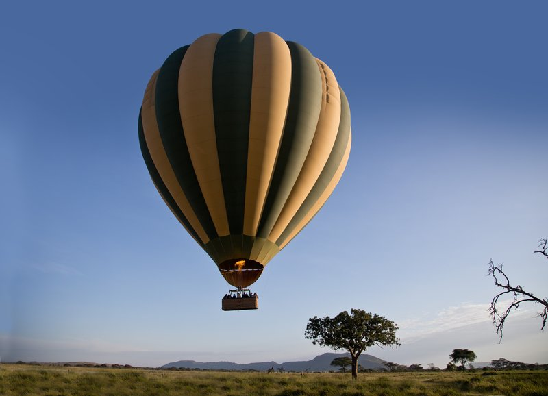 large_Hot_Air_Balloon_32.jpg