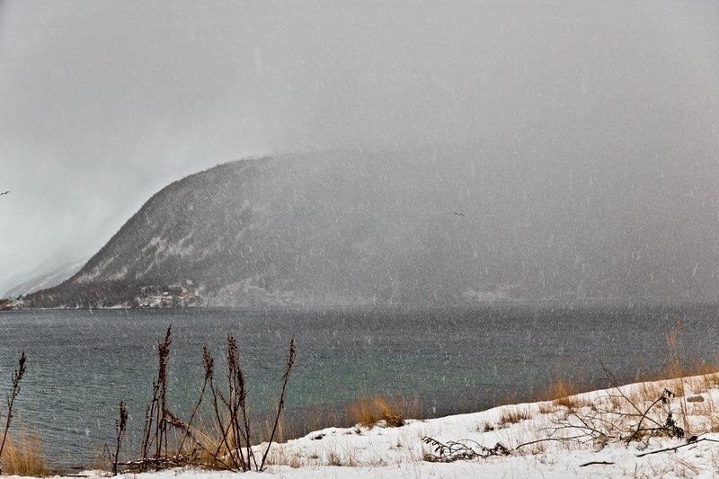 large_Kaldfjorden_2.jpg