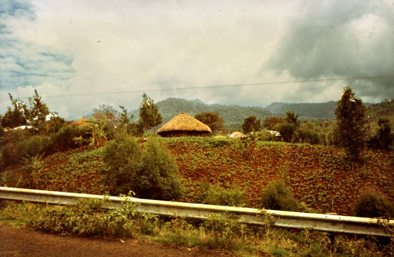 large_Kikuyu_Village________073.jpg