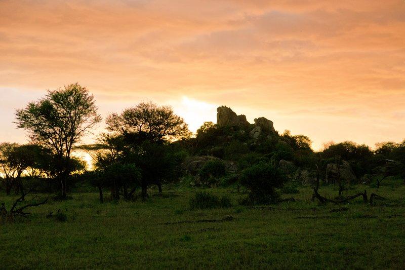 large_Kimasi_Kopje_Sunset_4.jpg