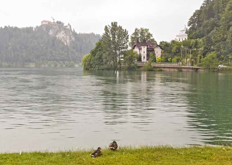 large_Lake_Bled_3.jpg