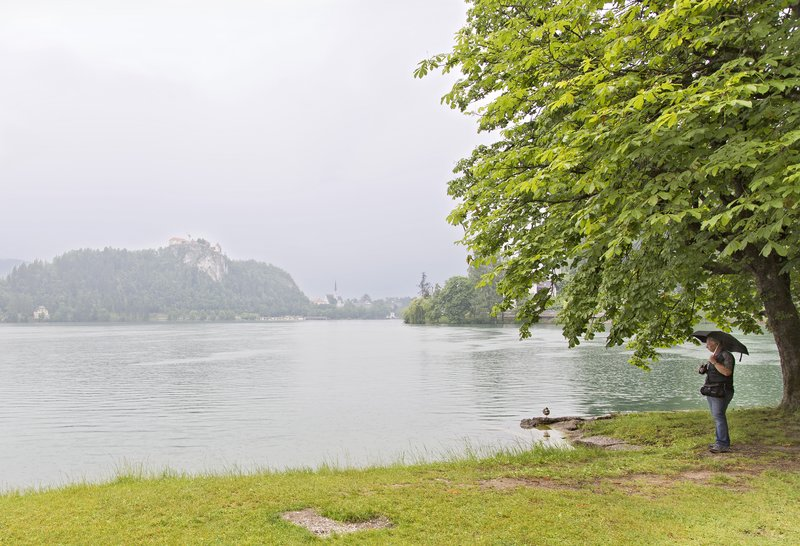 large_Lake_Bled_5.jpg